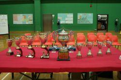 第十八屆大埔盃羽毛球隊際邀請賽 (2008-10-07)